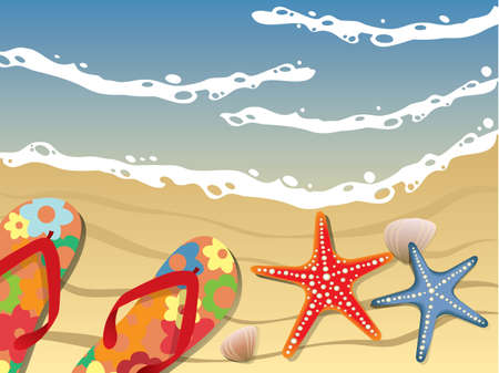 caribbean beach: Flip-flops and shells on the beach Illustration