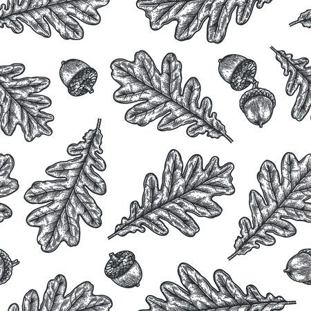 Engraving seamless pattern of Oak Leaf and Acorn. Detailed hand drawn autumn background.