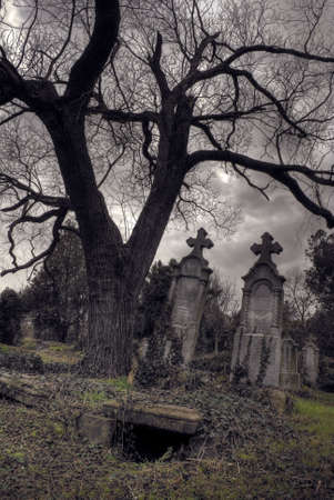 gothic scene with opened tomb photo