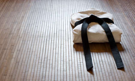 karate: aikido gi