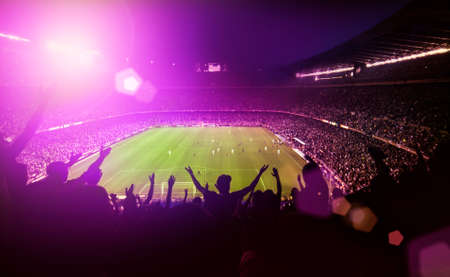 soccer fans: crowded soccer stadium