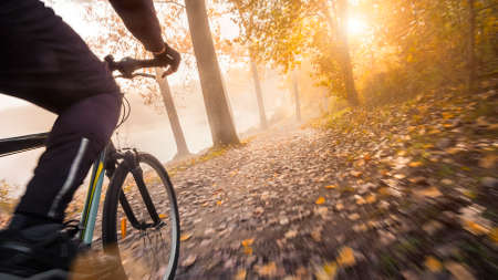 Cycling in a hazy autumn forest. Riding a bicycle, with motion blurred ground in golden sunshine.