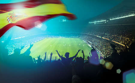 crowded football stadium with spanish flag Standard-Bild