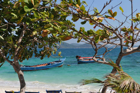 Wonderful picture on tropic coral island in Thailand photo