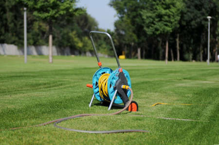 lies down: Hose in the park on the green grass. The pipe lies down on grass. Stock Photo