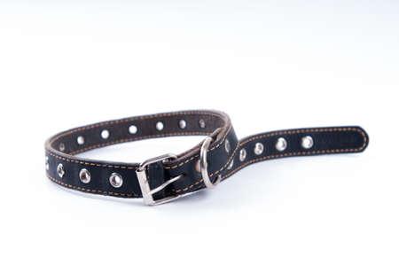 convolute: Black dog leather collar Stock Photo
