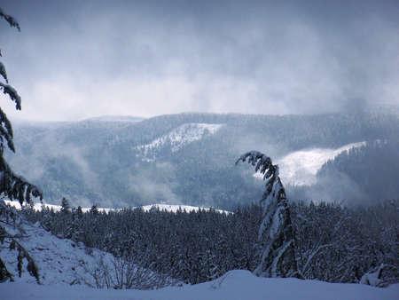 Winter in Cascades