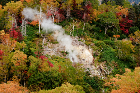 Smoke from the volcano under the red leaves forest Stok Fotoğraf