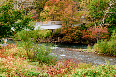 River and bridge in red leaf valley