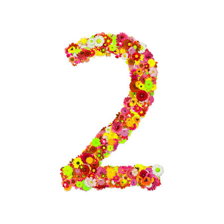 High Quality Raster Flower Number 2 Stock Photo