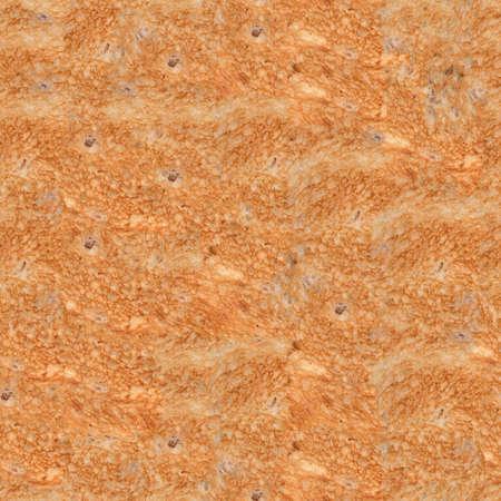 Seamless Toasted - Fried Bread  Toast  Texture Stock Photo