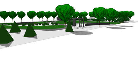 shrubs: Illustration of contemporary garden. With hand drawn trees and shrubs. On white background.