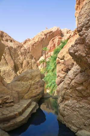 River between rocks in the oasis of Tozeur. Tunisia, Africa. Stock Photo - 10722262