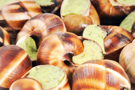 regionally: Bourgogne snails with garlic butter. French cuisine. Stock Photo