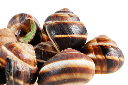 regionally: Bourgogne snails with garlic butter. French cuisine Stock Photo