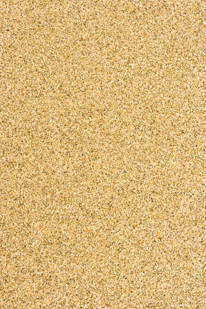 Smooth sandy floor and fine texture. Stock Photo