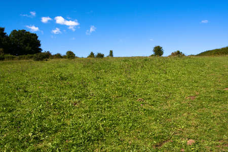 Open sky and grass land in England. Stock Photo