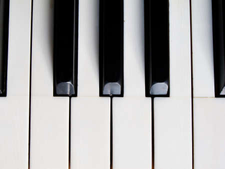 Black and white piano key  photo