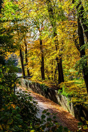 Autumn scenary in Swansea with road and rocky wall Stock Photo - 16295066