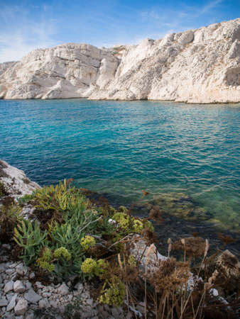 Mediterranean sea with rocky background and small plants on the foreground in Chateau d