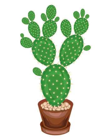 A potted plant is shown. Cactus Opuntia with flat juicy green leafy stems, covered with sharp thorns. Lovely hobby for collectors of cacti. Vector illustration. Ilustrace