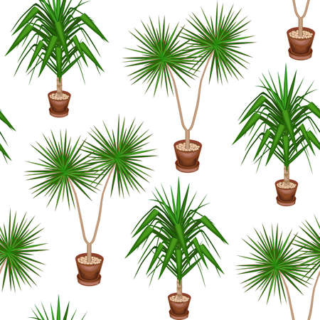 Yucca and dracaena in pots on a white background. A fancy pattern. Suits as wallpaper, as a background for gift wrapping. Creates a cheerful mood. Vector illustration.