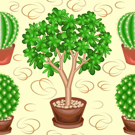 Cacti and Crassula in pots on a green background. A fancy pattern. Suitable as wallpaper on, as a background for gift wrapping. Creates a cheerful mood. Vector illustration.