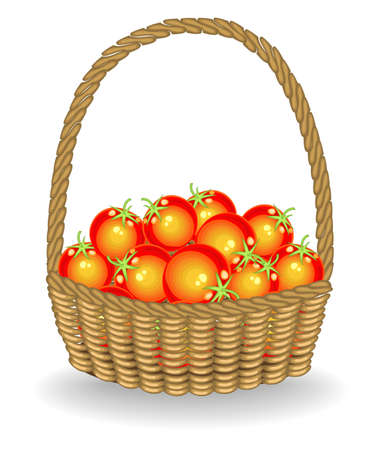 Generous harvest. In a beautiful wicker basket fresh tomatoes. The vegetables are very tasty and vitamin. It is necessary for cooking and healthy. Vector illustration.  イラスト・ベクター素材