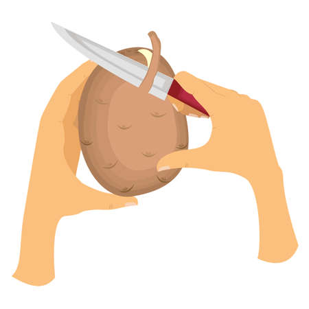 Picture how to peel potatoes from the peel. The left hand holds potatoes, the right hand holds the knife and gently cuts the skin. Vector illustration