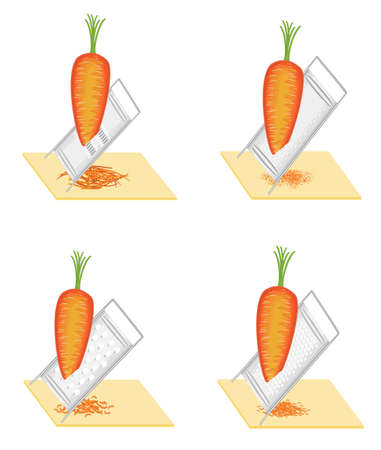 Collection. Mature beautiful carrots. Vegetables grind to grater. Preparation of tasty, healthy food. Set of vector illustrations.
