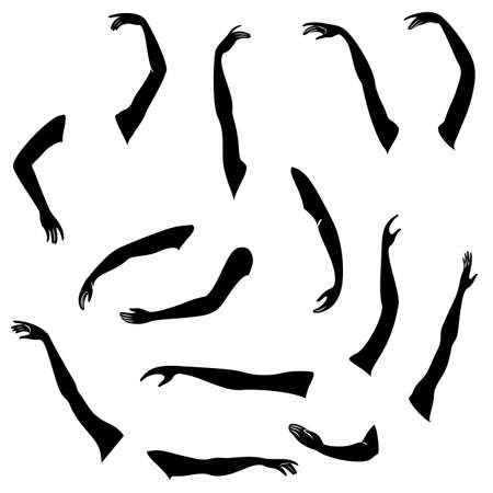 Women s hands. Beautiful graceful silhouettes. Collection. Vector illustration of a set