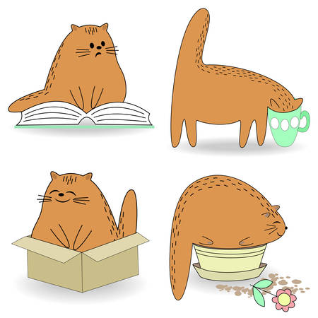 Life cat collection. A pet reads, drinks from a cup, sits in a box and on a flowerpot. The animal is cute and beautiful. Cartoon image. Vector illustration set