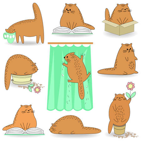 Life Cat Collection. The pet lies, reads, drinks from a cup, sits in a flower pot, climbs along the curtain. The animal is cute and beautiful. Cartoon image. Vector illustration set. Çizim