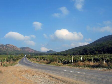 Day view of road between vineyards in mountains. (Crimea, Ukraine) photo