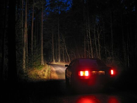 Car with lights on the road in deep forest at the night.  photo