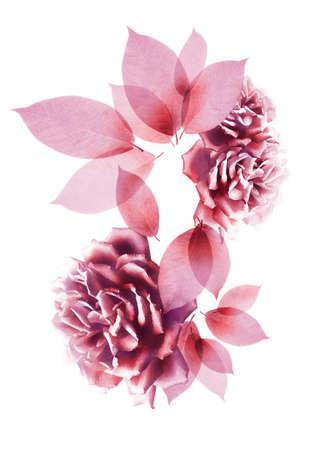 composite: Compuesto de flores y hojas