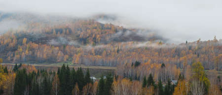 fairyland: In late autumn, after Gods Garden, the morning of hemu, mist, like a fairyland. Stock Photo