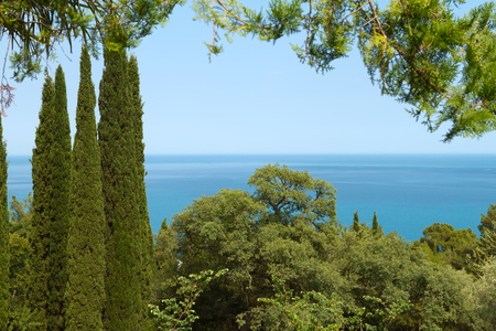 View of the Black Sea through the trees in the park of Livadia Palace