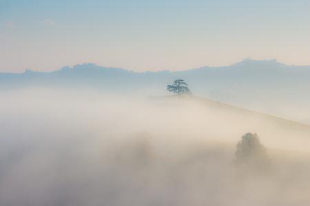 nebbia: Vista sulle Langhe nel comune di La Morra Patrimonio dellUmanita Unesco