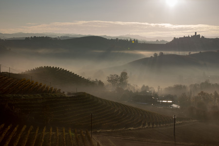 View on the Langhe in the municipality of La Morra, Patrimony of the Humanity