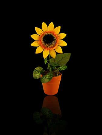 artificial yellow sunflower in the pot        photo