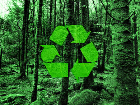 environmental safety: recycling symbol on forest background Stock Photo