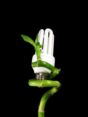 ecology concept. eco light bulb on plant Stock Photo - 4183550