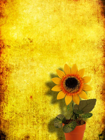 artificial sunflower in the pot on grange yellow background         photo