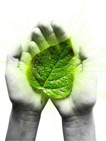 Ökologie-Konzept. Rolle des Menschen im Umweltschutz