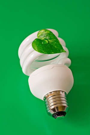 Energy saving lightbulb with green dewy leaf Stock Photo - 6320868
