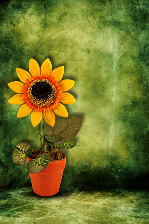 yellow artificial sunflower on dark green background photo