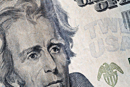 Close-up  of a twenty dollars banknote Stock Photo - 6867890