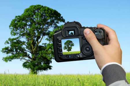 photographer  photographing landscape with digital photo camera Stock Photo - 7293030