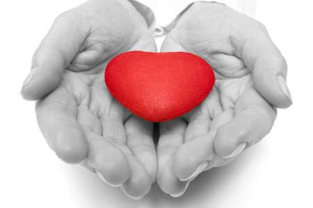 bondad: Concepci�n del amor. manos femeninas con coraz�n rojo.